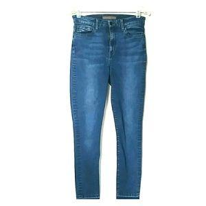 Joe's Jeans Hi Rise Shirley Skinny Women's Size 29